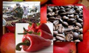Exportaciones peruanas lograron nuevo récord durante el 2011