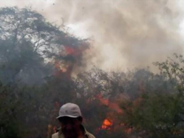 Cusco: incendio forestal destruye 140 hectáreas de cultivos en La Convención