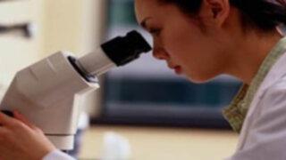 Científicos vinculan peste negra con enfermedad actual