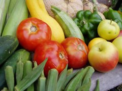 Frutas y hortalizas serían productos banderas del Perú en el mundo