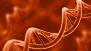 Según los expertos en 20 años se podría curar hasta un 80% de tumores