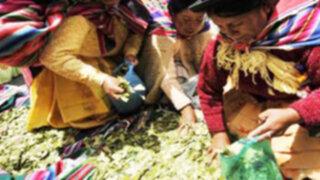 La hoja de Coca es declarada patrimonio de Perú y Bolivia
