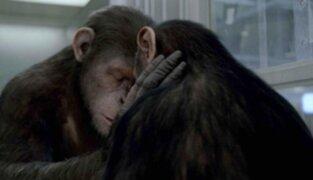 """Se inicia firma de contratos para la secuela de la cinta """"El origen del planeta de los simios"""""""