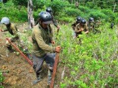 Gobierno ingresará por primera vez al VRAEM para erradicar cultivos ilegales