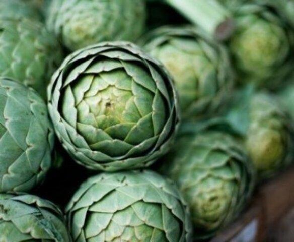 Exportaciones de alcachofas alcanzan los 39, millones de dólares