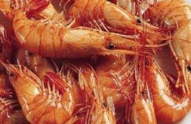 Esta medianoche levantan veda del camarón por Semana Santa