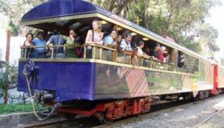 Implementaran biblioteca gratuita en tren turístico Lima-Huancayo