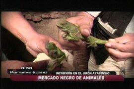 Ofertan animales en extinción entre S/.60 y S/.100 en el Centro de Lima