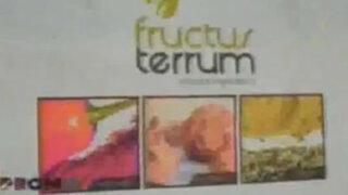 Diversos ingredientes peruanos de calidad se exportan con éxito