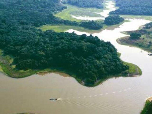 Perú perdió más de 750 mil hectáreas de bosques en los últimos años
