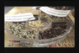 Agricultores selváticos buscan vender café y cacao a tiendas