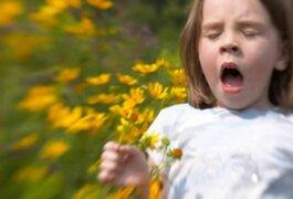 WAO: Las alergias son una pandemia mundial