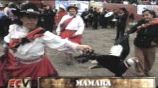 Las historias de Mamara: un refugio andino en medio de la ciudad