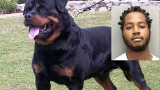 Insólito: hombre mordió a un perro Rottweiler en Estados Unidos