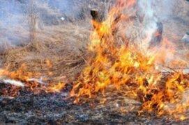 Increíble. Hombre quema viva a su sobrina por brujería