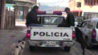 Huancayo: perros no quisieron abandonar a reciclador fallecido