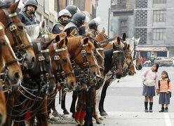 Caballos de la policía usarán trajes especiales para su protección