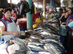 Noticias de las 5: con guitarra y cajón abren nuevo terminal pesquero del Callao