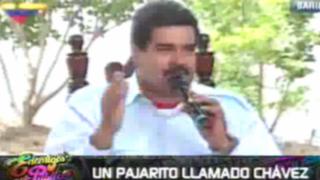 Un pajarito llamado Chávez: Maduro sintió 'la presencia' del ex presidente
