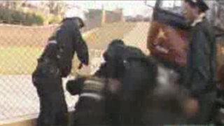 Cúster a excesiva velocidad arrolló a dos adultos y un niño en Arequipa