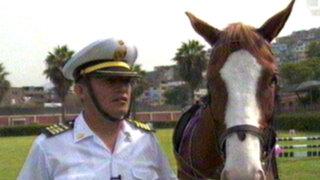 Terapia al galope: la noble misión de los caballos en la Policía Montada