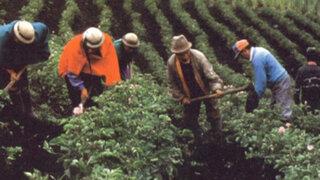 Experto señala que sólo repotenciarán agricultura con nuevas políticas