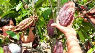 Mincetur implementa ambicioso programa para impulsar la producción nacional
