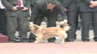 VIDEO: Seguridad del Estado maltrató a perro que ingresó a Parada Militar