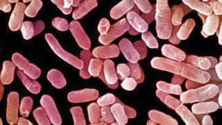 "Europa: Médicos no encuentran antídoto contra mortal ""bacteria pesadilla"""