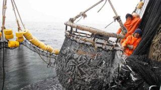 Buque de investigación científica definirá cuota de anchoveta para próximos meses