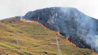 Cusco: incendio arrasa con 20 hectáreas de bosques en Machu Picchu