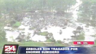 EEUU: inmenso sumidero absorbe cientos de árboles en pantano de Luisiana