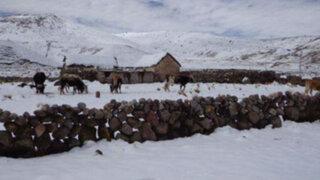 Intensas nevadas en la región Puno cobran su primera víctima mortal