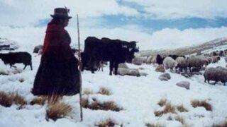 Oficializan estado de emergencia en 9 provincias de Puno por intensas nevadas