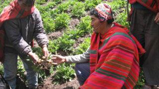 Hambre afecta a 48 millones de personas en toda América Latina