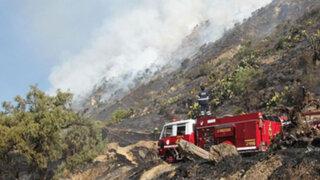 Incendio forestal arrasó 80 hectáreas de pastos en Cusco