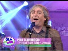 Pelo D' Ambrosio brindará show en festival Vientos del Ande el 29 de setiembre