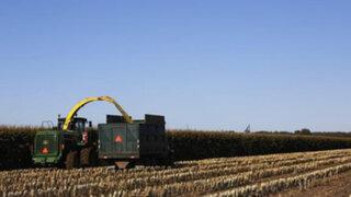 China comprará el 5% del territorio de Ucrania para agricultura y ganadería
