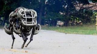 """Presentan """"WildCat"""" el robot militar más rápido que Usain Bolt"""