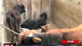 VIDEO: pobladores intentan linchar a ladrones de ganado en Huari