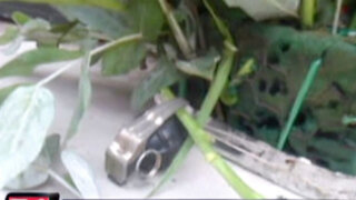 Entregan arreglo floral con una granada a sujeto que acusó a delincuente 'Caracol'
