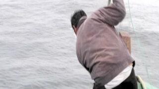 Pescadores artesanales masacran delfines para la caza de tiburones