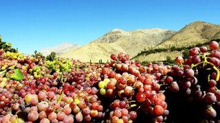 En Ruta: Conozca las maravillas de Zúñiga, la tierra del eterno sol radiante