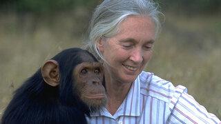 Jane Goodall quedó asombrada por variedad de primates en selva peruana