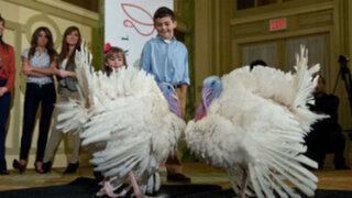 Estados Unidos celebra su Día de Acción de Gracias en austeridad