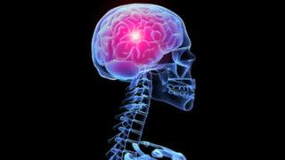 FOTOS: ten cuidado, estos ocho hábitos le hacen daño a tu cerebro