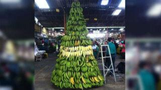 El espíritu navideño llegó hasta Loreto con este simpático árbol