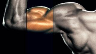 Crean músculos artificiales 1.000 veces más fuertes que su versión humana