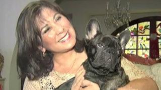Martha Chávez propondrá  proyecto de ley contra pirotécnicos