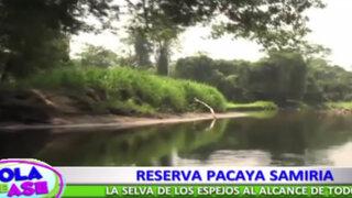 Reserva Pacaya Samiria: Conozca una de las maravillas de la ciudad de Loreto